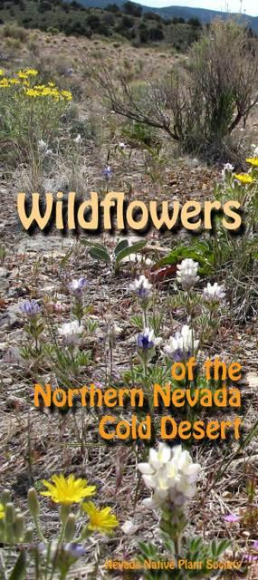 wildflowers of the northern nevada cold desert nevada native plant